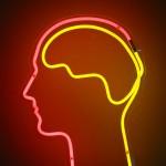 Brain Health Myths, Truths, and Enhancers (Like Prevagen)