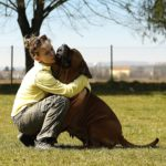 Emotional Support Animals as Medicine for Psychological Illnesses