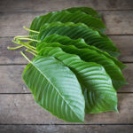 What to Know About Kratom For Treating Arthritis