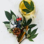 5 Surprising Health Benefits Of Cannabis Tea